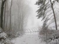 naturpark_ebbegebirge_4878