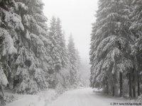 naturpark_ebbegebirge_5180