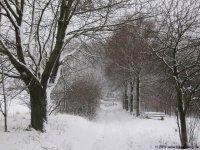 naturpark_ebbegebirge_4793