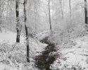 naturpark_ebbegebirge_4836