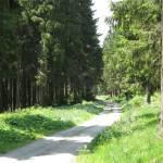 Tagestour Rothaarsteig: Bruchhausen - Küstelberg