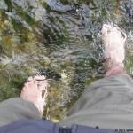 Wandern, Wasser und Wohlfühlen auf dem Olsberger Kneipweg