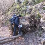Auf den Wildnis-Trail durch den Nationalpark Eifel - Etappe 3