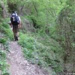 Unterwegs auf dem Rheinsteig: Tag 2 - Von Kestert nach Bornich