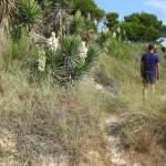 Wandern auf der spanischen Baleareninsel Mallorca