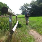 Trekking auf dem Ederhöhenpfad und Urwaldsteig (1/4)