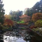 5 Tipps für schöne Outdoor-Fotos im Herbst