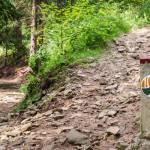 Die Bergische 100 - Das neue Wanderevent im Bergischen Land und ich bin dabei!