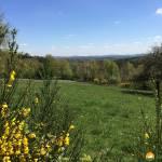 Familien- und Wanderurlaub im Hunsrück