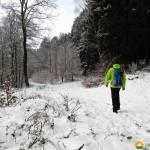 Schneewanderung um die Nordhelle und durch den Herveler Bruch